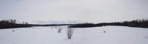 Edmonton - föstudagur - 101 - Elk Island